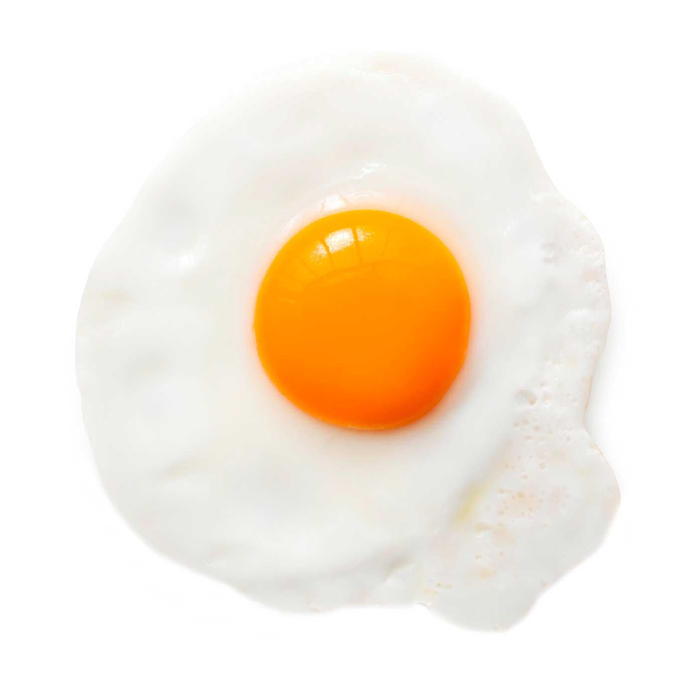 Fried Egg Aqua4balance